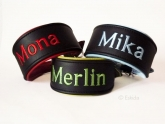 Name Collar 2 colours