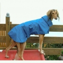 dog-raincoat