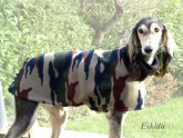 dog-pullover Camouflage